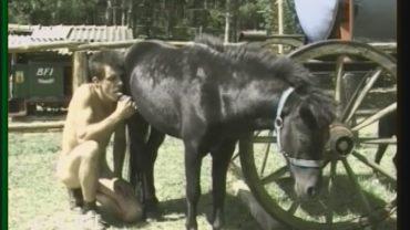 bem0254_-_fun_with_my_pony