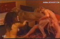 dog_meat_sv