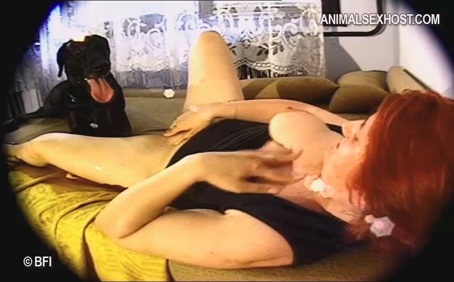 programma-dlya-poiska-i-skachivaniya-porno-filmi