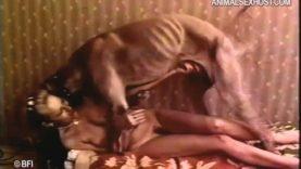 Dog sex russian Animal Porn