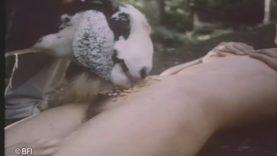 Sex vintage animal .:: Forbidden